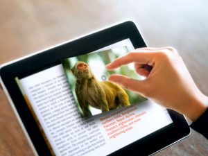 Експерт: Електронните учебници не са алтернатива на книжните