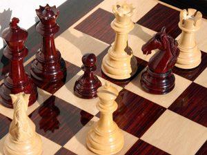 """""""Шах в училище"""" впечатли Германия"""