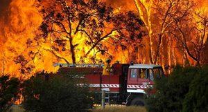 Ученици запалиха училище