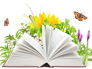 """Сугостопедично студио """"Жива приказка"""" или как оживяват книгите"""