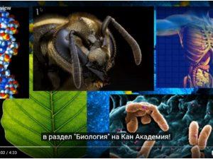 Безплатни видео уроци по биология и медицина стават достъпни за българските деца